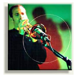 Réflecteur pour microphone