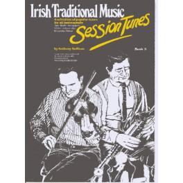 Irish traditional music / session tunes vol.3