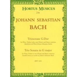 Triosonate G-DUR BWV 1038