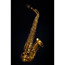 Saxophone low pitch alto Gretsch