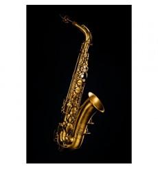 Saxophone alto Martin Indiana