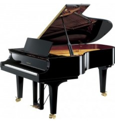 Piano à queue W.Hoffmann vision 158